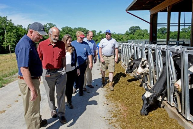 Turkey Hill Dairy, 3 national corporations focus on Lancaster County farmers over water pollution