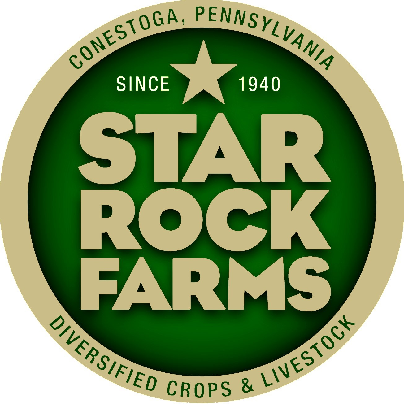 Star Rock Logo